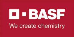 BASF_500